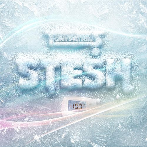 Play & Download Stesh by Tony Patriks | Napster