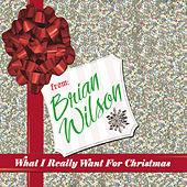 Play & Download What I Really Want For Christmas by Brian Wilson | Napster