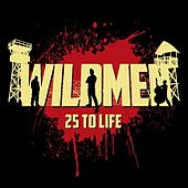 Play & Download 25 to Life by Milwaukee Wildmen | Napster