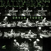 Play & Download Tudor: Rainforest - Versions I (1968) & Iv (1973) by David Tudor | Napster