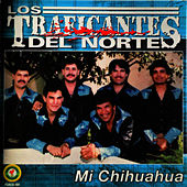 Play & Download Mi Chihuahua by Los Traficantes del Norte | Napster