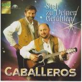 Play & Download Steh zu deinen Gefühlen by Los Caballeros | Napster