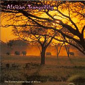 Play & Download African Tranquility: The Contemplative Soul Of Africa by Various Artists | Napster