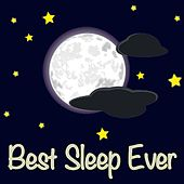 Play & Download Best Sleep Ever - Delta Wave Isochronic & Binaural & Healing Solfeggio Audio Soundscapes for Better Sleep by Satori Sounds | Napster