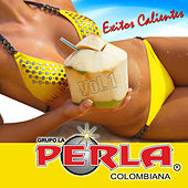 Play & Download La Perla Colombiana 20 Exitos, Vol. 1 by Grupo Perla Colombiana | Napster