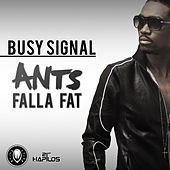 Ants Falla Fat - Single by Busy Signal