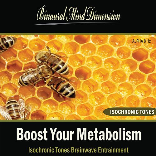 Play & Download Boost Your Metabolism: Isochronic Tones Brainwave Entrainment by Binaural Mind Dimension | Napster
