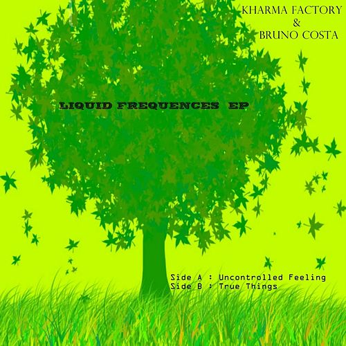 Play & Download Liquid Frequency by Kharma Factory | Napster