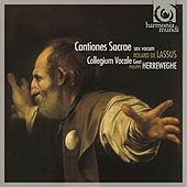 Lassus: Cantiones sacrae sex vocum by Collegium Vocale Gent and Philippe Herreweghe