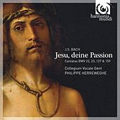 J.S. Bach: Jesu, deine Passion by Various Artists