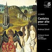 J.S. Bach: Cantatas for Alto Solo by Various Artists