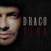 Vida by Robi Draco Rosa