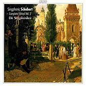Play & Download Schubert: Complete Part Songs for Male Voices, Vol. 3 by Die Singphoniker | Napster