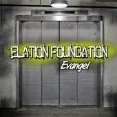 Elation Foundation by Evangel