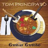 Guitar Gumbo by Tom Principato
