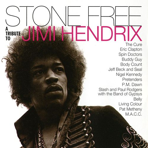 Stone Free: A Tribute to Jimi Hendrix by Various Artists