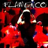 FLAMENCO GUITAR by Bruno Gennaro