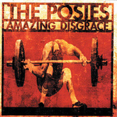 Play & Download Amazing Disgrace by The Posies | Napster