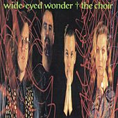 Wide-Eyed Wonder by The Choir (Gospel)
