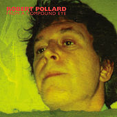 Play & Download From a Compound Eye by Robert Pollard | Napster
