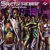 Strictly The Best Vol 34 by Various Artists