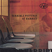 Play & Download Terrible Pictures of Harriet by JVA | Napster