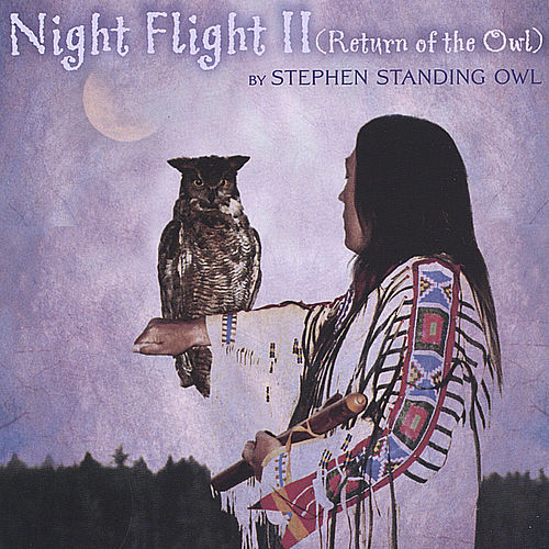 Night Flight ll (Return of the Owl) by Stephen Standing Owl