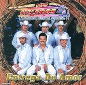 Play & Download Entrega De Amor by Los Rieleros Del Norte | Napster