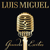 Play & Download Grandes Exitos - Us Cd Version by Luis Miguel | Napster