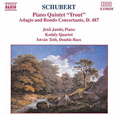 Play & Download Trout Quintet by Franz Schubert | Napster