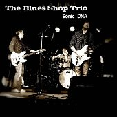 Play & Download Sonic DNA by The Blues Shop Trio | Napster