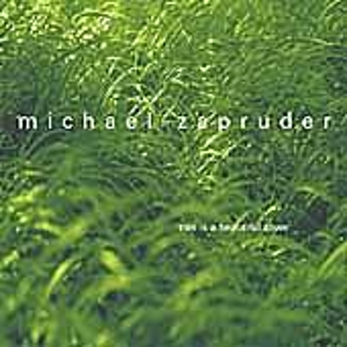 Play & Download This Is A Beautiful Town by Michael Zapruder | Napster