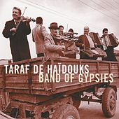 Band Of Gypsies by Taraf de Haidouks