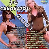 Play & Download 14 Canonazos: Bailables 2001 by Various Artists | Napster