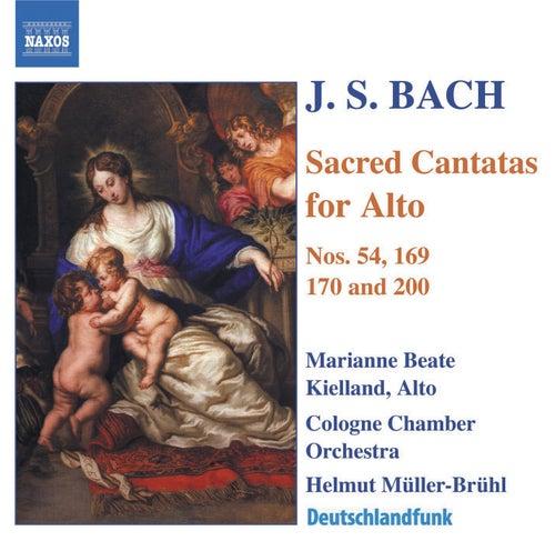 Play & Download Sacred Cantatas For Alto by Johann Sebastian Bach | Napster