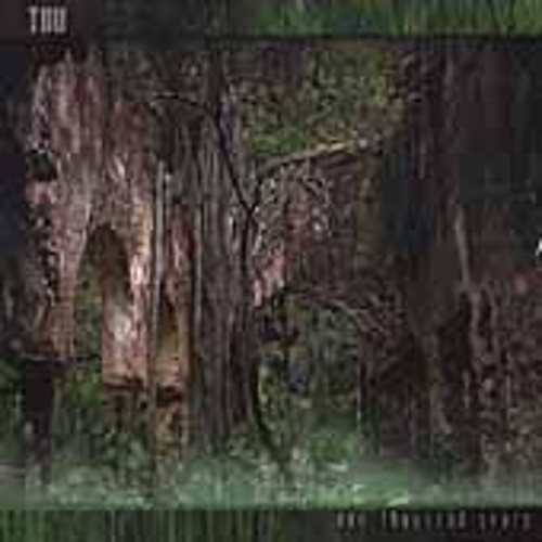 Play & Download One Thousand Years by TUU | Napster