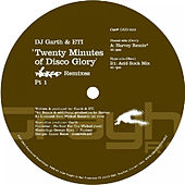 20 Minutes Of Disco Glory (Remix By Harvey / '96 Acidrockmix) von DJ Garth