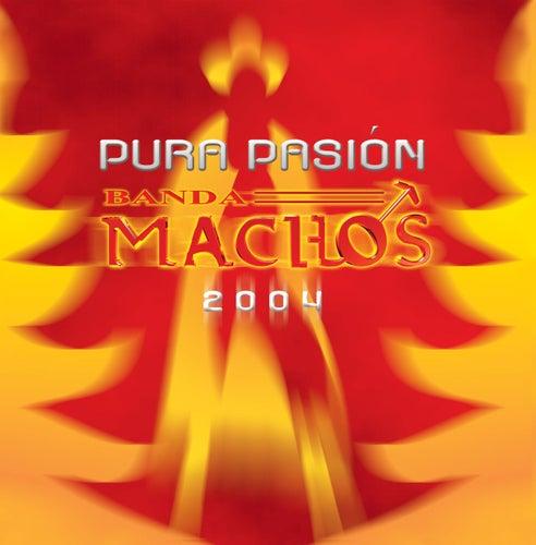 Play & Download Pura pasión by Banda Machos | Napster