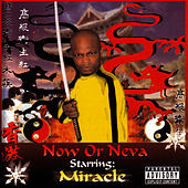 Play & Download Now Or Neva by Miracle | Napster