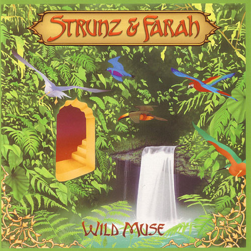Play & Download Wild Muse by Strunz and Farah | Napster