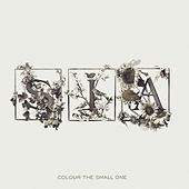 Play & Download Colour The Small One by Sia | Napster