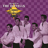 Play & Download The Best Of The Dovells 1961-1965 by The Dovells | Napster