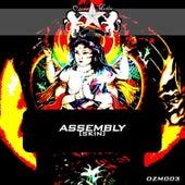 Skin by Assembly