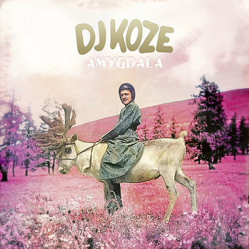 Amygdala by DJ Koze