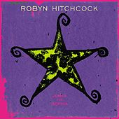 Jewels For Sophia by Robyn Hitchcock