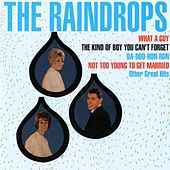 Play & Download The Raindrops [Digital Version] by The Raindrops | Napster