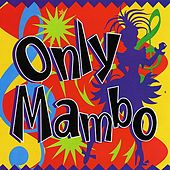 Only Mambo by Various Artists