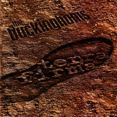 Play & Download Terra Firma by The Buckinghams | Napster