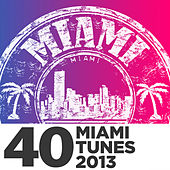 Play & Download 40 Miami Tunes 2013 by Various Artists | Napster