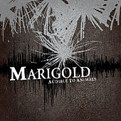 Play & Download Audible To Animals by Marigold | Napster